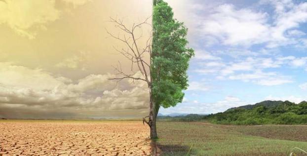 Риски изменения климата и регулирование страховой отрасли США