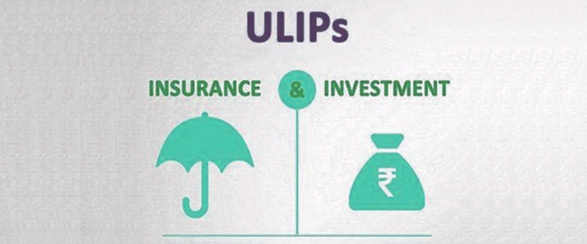 Why you should choose investment life insurance to accumulate capital
