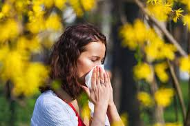 What Should High Allergic People Do in the Spring?