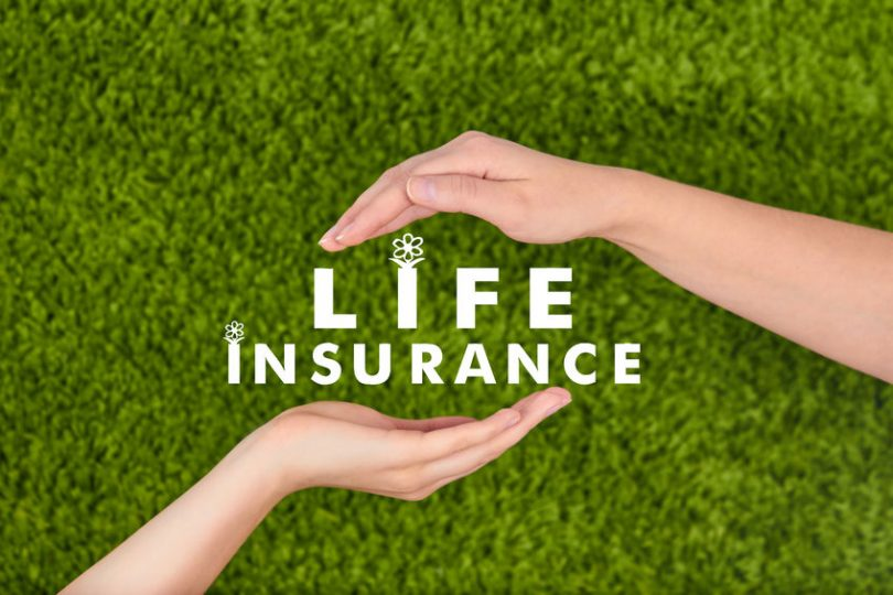 Why investing in life insurance companies is reliable?